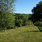 Espaces verts Domaine de la Rousselie