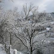 L'hiver aux alentours de la maison d'hôtes