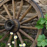 Vieille roue