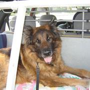 Lukas' allerletzte Fahrt... am 18. April 2008