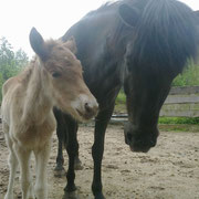 Daladís & Mama Þruma