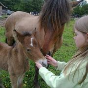 Töchterchen Jana findet das Fohlen auch ganz toll :)