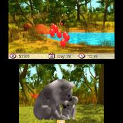 Review: Outback Pet Rescue 3D (3DS eShop) Outback-pet-rescue-3d