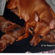 Unsere Kleinen 9 Tage alt