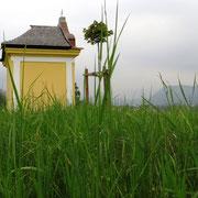 Heuschreckenkapelle