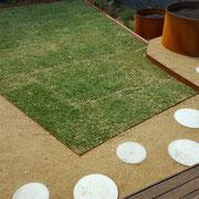 Randwick, Sydney - Australian-native rear garden