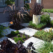 Dover Heights, Sydney - front garden design