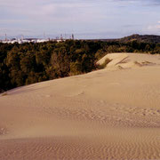 Kurnell sand dunes - heritage impact study