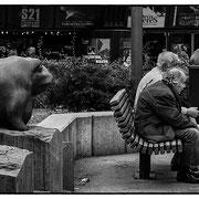 Photo: D Parigot
