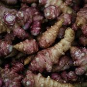菊芋(Topinambur)