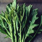 搾菜(ザーサイ)菜の花
