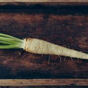 ルートチコリ(Root Chicory)