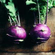 紫コールラビ(Purple kohlrabi)