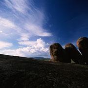 Serengeti. Tansania.
