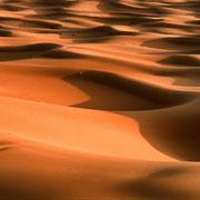 Sahara. Marokko.
