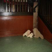 Bierlasur / Biermalerei - Restaurierung beim Treppenaufgang