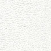 Weiß-8201