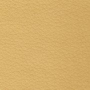 Sand-5091
