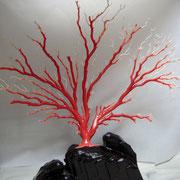 桃珊瑚「拝見」 幅510mm×高さ470mm(台座込み)×奥行170mm 95匁(約365g)珊瑚本体の重さ