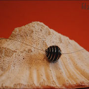 Spiralkugelkette mit Juwelierdraht u. Verschluß (33 € *)