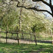 Soweit ist der Zaun ersteinmal fertig. Im offenen Bereich wird noch ein Bienenkorbstand integriert.