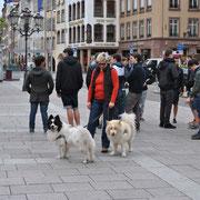 Straßburg, nach dem Elotreffen
