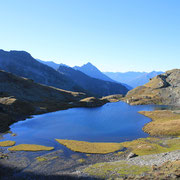 Grauer See