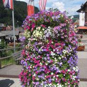 Triberger Blumen