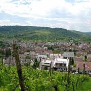 © Traudi  - Ausblick nach Beutelsbach