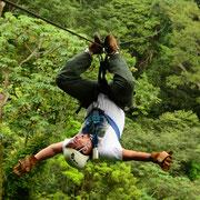 Canopy en Rainforest