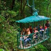 Teleférico en el bosque