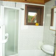 Das Badezimmer mit Duschwanne