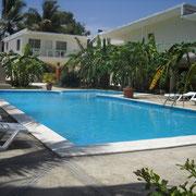 Escorts für Ihren Urlaub in der Dom Rep. Karibik.