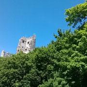 Burg Drachenfels in Königswinter nahe Köln