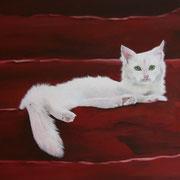 weisse Katze auf Treppe (Öl), 50 x 80 cm