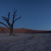 dead vlei sossusvlei |namib desert | namibia 2015