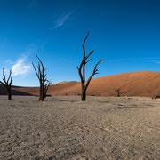 panorama | sossusvlei | dead vlei | namibia 2015