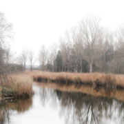 mist lippe| baltic sea | germany 2020