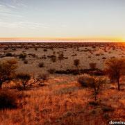 sunrise kalahari desert | namibia 2012