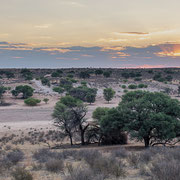 sundown | kgalagadi | namibia 2018