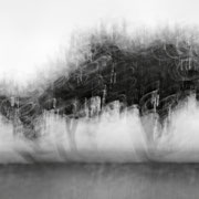 """Title: """"3 little trees 01, b&w"""", august 2014 (see also """"blurry trees"""", printed on """"bamboo"""")"""