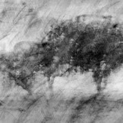 """Title: """"Poetic trees 05, b&w"""", august 2014, composite photograph 2019 (printed on """"bamboo"""")"""