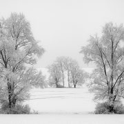 """Title: """"Frozen silence 02, b&w"""", 2021 (printed on """"bamboo"""")"""