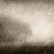 """Title: """"Lost in tranquility 08"""", december 2014, compositing photo 2018 (printed on """"bamboo"""")"""