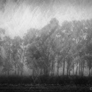 """Title: """"Lost in tranquility 02, b&w"""", december 2016, composite photograph 2018 (printed on """"bamboo"""")"""