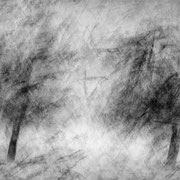"Title: ""Impressionist winter trees 01, b&w"", december 2014, composite photograph 2020 (printed on ""bamboo"")"