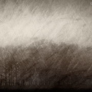 """Title: """"Lost in tranquility 07"""", december 2015, composite image 2018 (printed on """"bamboo"""")"""