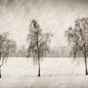 """Title: """"Lost in tranquility 06"""", december 2014, composite photograph 2018 (printed on """"bamboo"""")"""