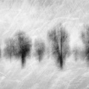 """Abstract winter poem 02, b&w, december 2014, compositing artwork 2018 (printed on """"bamboo"""")"""