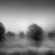 "Title: ""Summer rain 08, b&w"", june 2013 (printed on ""bamboo"")"